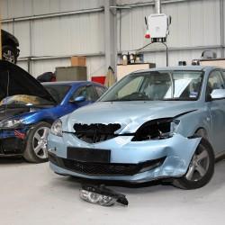 פגע וברח: רכבך נפגע על ידי תייר? אכלת אותה!