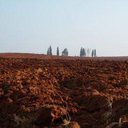 """טיול לסופ""""ש: אל שדות עמק יזרעאל"""