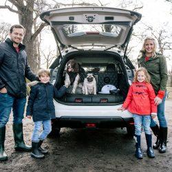 רכב הפנאי בגרסה לכלבים וחתול תעלול ששרד נסיעה קשה