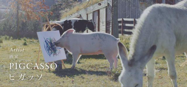 ניצלה מתעשיית הבשר ותכננה מסלול דריפטינג