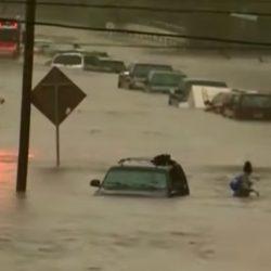 הוריקן הארווי: מיליון רכבים נפגעו, חלקם עשויים להגיע גם לישראל