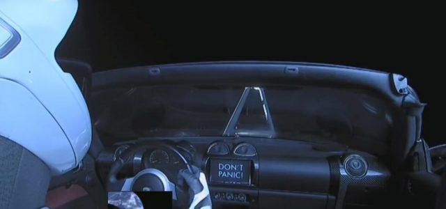 טסלה עושה חרקות בחלל וממשיכה לפרפר על הקרקע